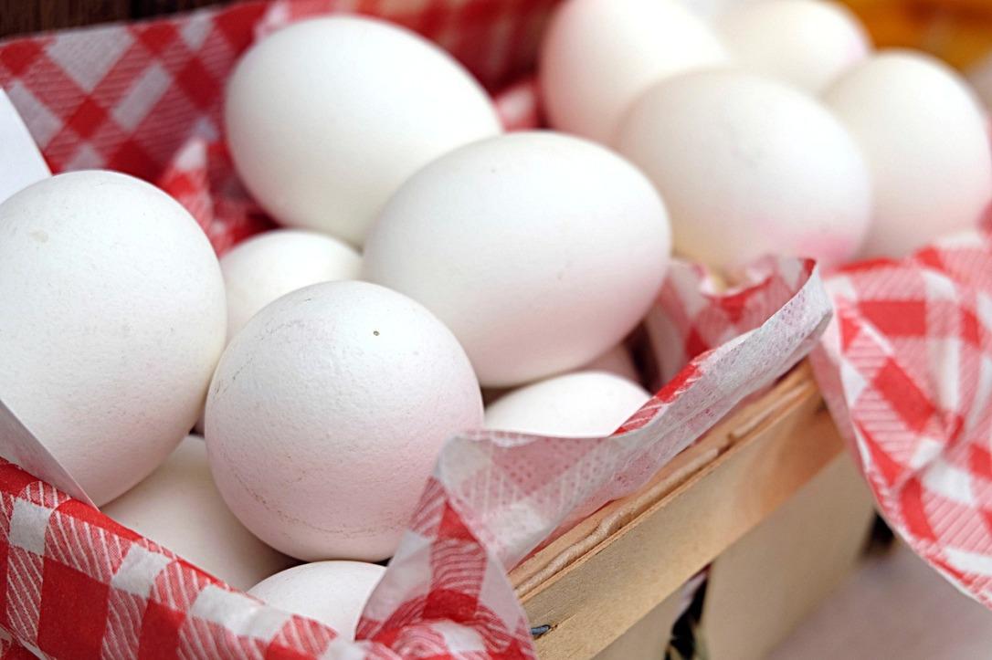 egg-2189986_1280